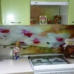 Зеленая кухня в Дзержинске